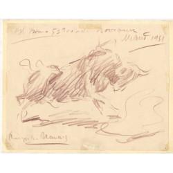 Angel Gonzalez Marcos. Dibujo: El bravo 5º toro de Bohórquez. Madrid 1951