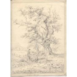 Paisaje Dibujo fechado en 1826 y firmado Charlotte