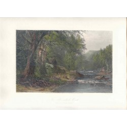 Estados Unidos. 'The Adirondack Woods' Painted by James.Macdonald.Hart (1828-1901). Engraved by Robert Hinshelwood (1812-)