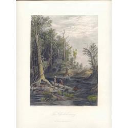 Estados Unidos. «The Chickahominy» Dibujó William Ludlow Sheppard (  -1912). Grabó William Wellstood (1819-1900).