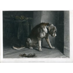 «The friend in suspense» Grabado por C. Lewis sobre obra de Edwin Landseer R.A.