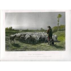 «The Shepherd» grabado por C. Cousen sobre obra de Rosa Bonheur
