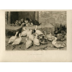 The last spoonful' Engraved by C.G. Murria after Briton Riviere en The Art Journal.