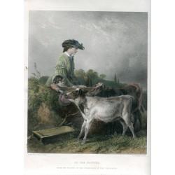 «In the pasture» grabado por C. Cousen sobre obra de R. Ansdell